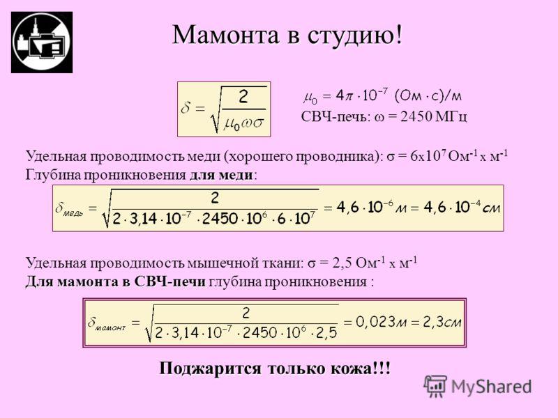 Мамонта в студию! Удельная проводимость меди (хорошего проводника): σ = 6 x 10 7 Ом -1 х м -1 для меди Глубина проникновения для меди: Удельная проводимость мышечной ткани: σ = 2,5 Ом -1 х м -1 Для мамонта в СВЧ-печи Для мамонта в СВЧ-печи глубина пр