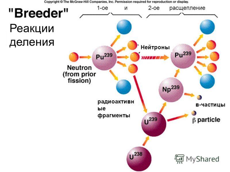 Нейтроны в-частицы радиоактивн ые фрагменты 1-ое и 2-ое расщепление Реакции деления