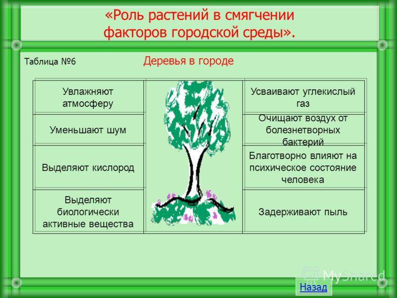 Таблица 6 Деревья в городе «Роль растений в смягчении факторов городской среды». Задерживают пыль Выделяют биологически активные вещества Благотворно влияют на психическое состояние человека Выделяют кислород Очищают воздух от болезнетворных бактерий