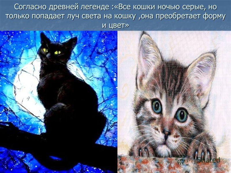 Согласно древней легенде :«Все кошки ночью серые, но только попадает луч света на кошку,она преобретает форму и цвет»