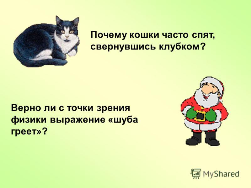 Почему кошки часто спят, свернувшись клубком? Верно ли с точки зрения физики выражение «шуба греет»?