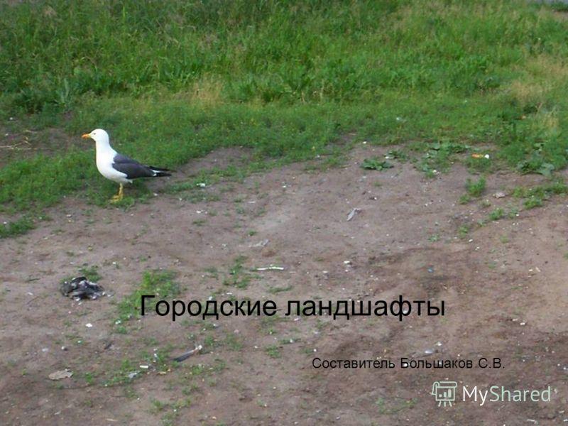 Городские ландшафты Составитель Большаков С.В.
