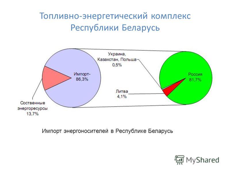 Топливно-энергетический комплекс Республики Беларусь Импорт энергоносителей в Республике Беларусь