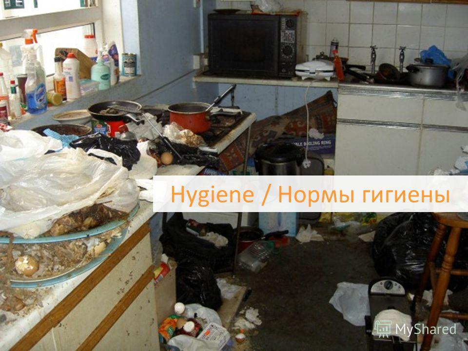 © SPIL GAMES Hygiene / Нормы гигиены