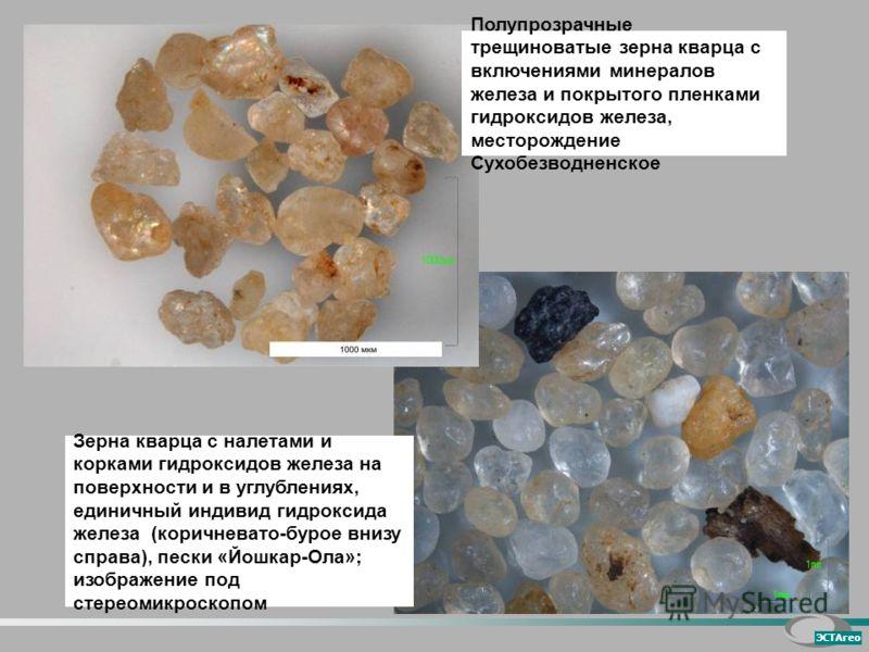 Зерна кварца с налетами и корками гидроксидов железа на поверхности и в углублениях, единичный индивид гидроксида железа (коричневато-бурое внизу справа), пески «Йошкар-Ола»; изображение под стереомикроскопом ЭСТАгео Полупрозрачные трещиноватые зерна