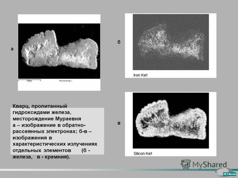 а б Кварц, пропитанный гидроксидами железа, месторождение Мураевня а – изображение в обратно- рассеянных электронах; б-в – изображения в характеристических излучениях отдельных элементов (б - железа, в - кремния). в ЭСТАгео