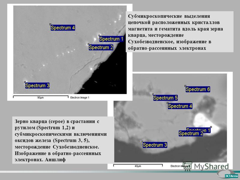 Зерно кварца (серое) в срастании с рутилом (Spectrum 1,2) и субмикроскопическими включениями оксидов железа (Spectrum 3, 5), месторождение Сухобезводненское. Изображение в обратно-рассеянных электронах. Аншлиф Субмикроскопические выделения цепочкой р
