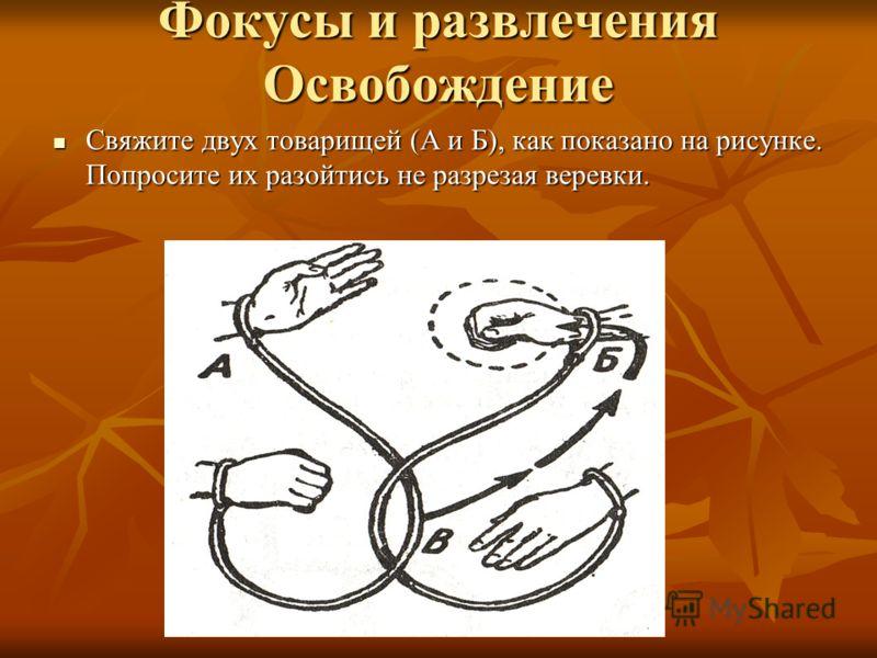 Фокусы и развлечения Освобождение Свяжите двух товарищей (А и Б), как показано на рисунке. Попросите их разойтись не разрезая веревки. Свяжите двух товарищей (А и Б), как показано на рисунке. Попросите их разойтись не разрезая веревки.