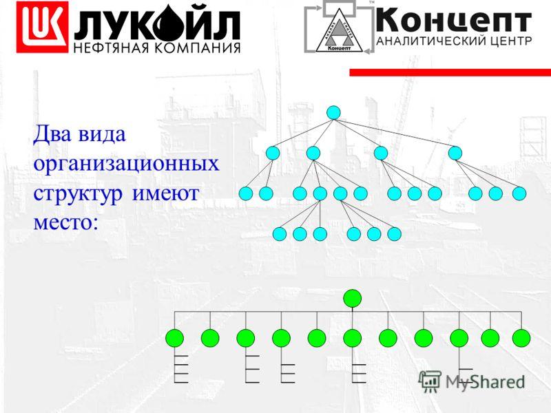 Два вида организационных структур имеют место: