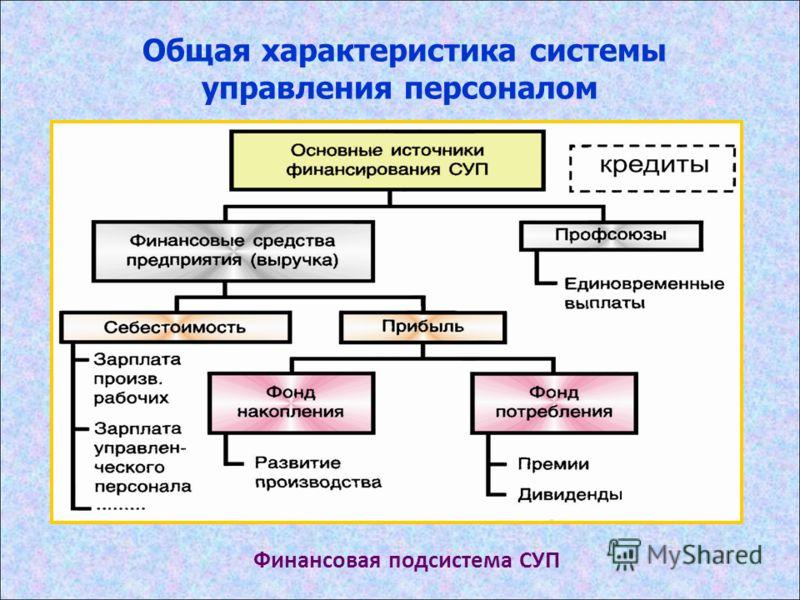 Общая характеристика системы управления персоналом Финансовая подсистема СУП