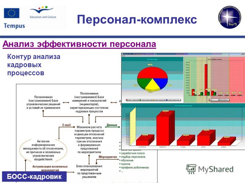 Анализ эффективности персонала Контур анализа кадровых процессов БОСС-кадровик Персонал-комплекс