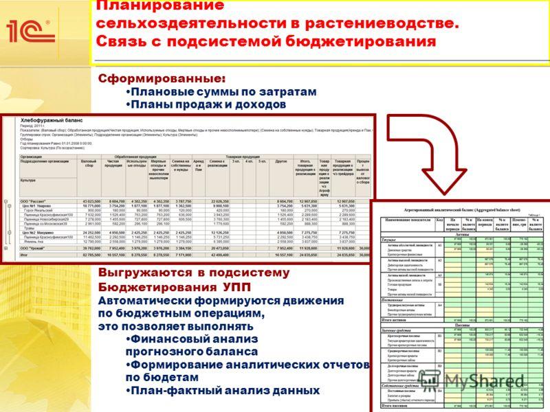 Сформированные: Плановые суммы по затратам Планы продаж и доходов Выгружаются в подсистему Бюджетирования УПП Автоматически формируются движения по бюджетным операциям, это позволяет выполнять Финансовый анализ прогнозного баланса Формирование аналит