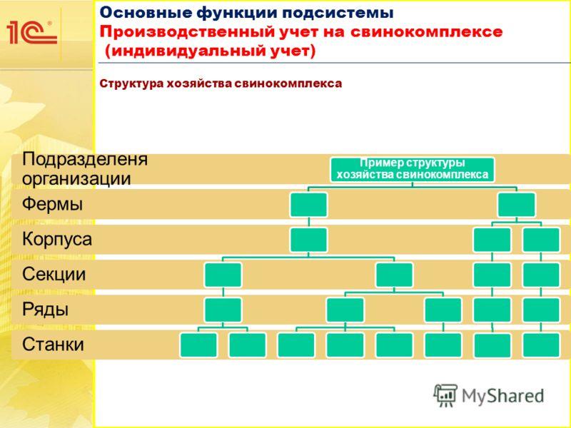 Основные функции подсистемы Производственный учет на свинокомплексе (индивидуальный учет) Основные функции подсистемы Производственный учет на свинокомплексе (индивидуальный учет) Структура хозяйства свинокомплекса Станки Ряды Секции Корпуса Фермы По