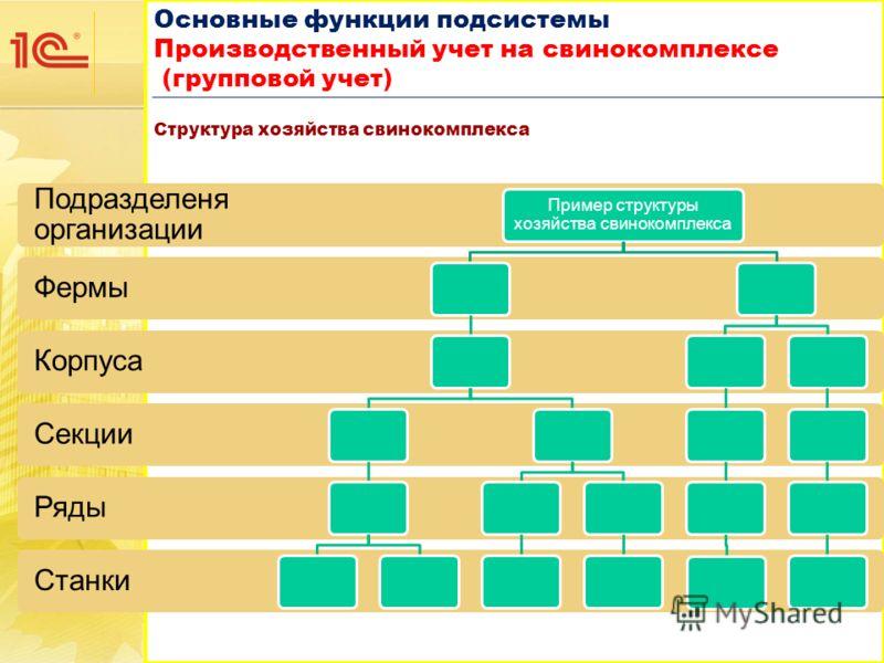 Основные функции подсистемы Производственный учет на свинокомплексе (групповой учет) Основные функции подсистемы Производственный учет на свинокомплексе (групповой учет) Структура хозяйства свинокомплекса Станки Ряды Секции Корпуса Фермы Подразделеня