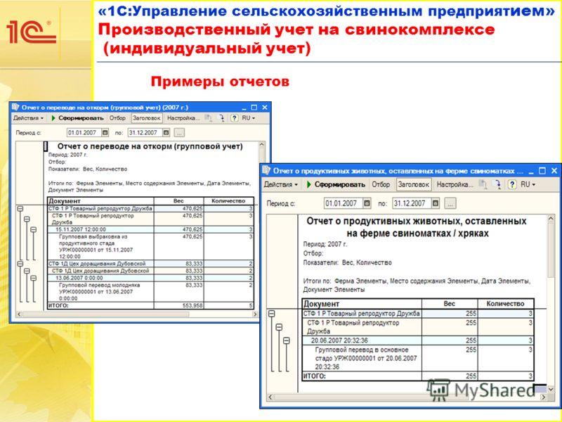 «1С:Управление сельскохозяйственным предприят ием» Производственный учет на свинокомплексе (индивидуальный учет) «1С:Управление сельскохозяйственным предприят ием» Производственный учет на свинокомплексе (индивидуальный учет) Примеры отчетов