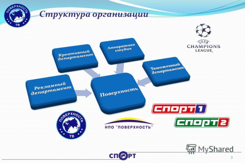 Структура организации 3