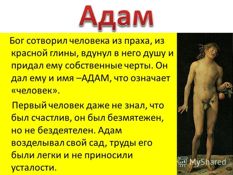 Бог сотворил человека из праха, из красной глины, вдунул в него душу и придал ему собственные черты. Он дал ему и имя –АДАМ, что означает «человек». Первый человек даже не знал, что был счастлив, он был безмятежен, но не бездеятелен. Адам возделывал