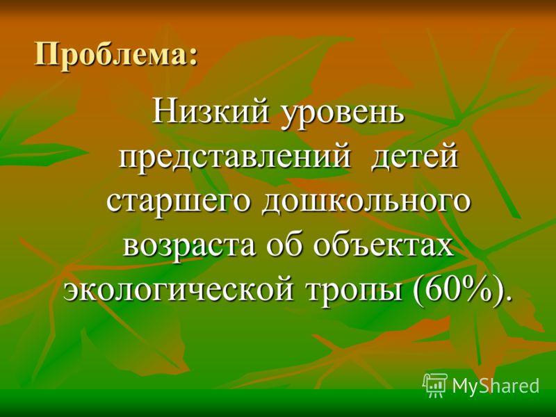 Проблема: Низкий уровень представлений детей старшего дошкольного возраста об объектах экологической тропы (60%).