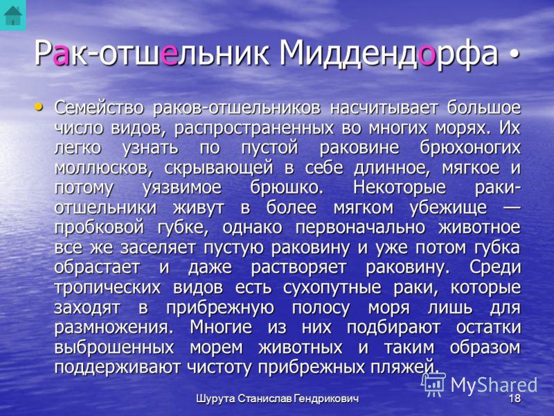 Шурута Станислав Гендрикович17 Рак-отшельник Миддендорфа PAGURUS MIDDENDORFFU Рис