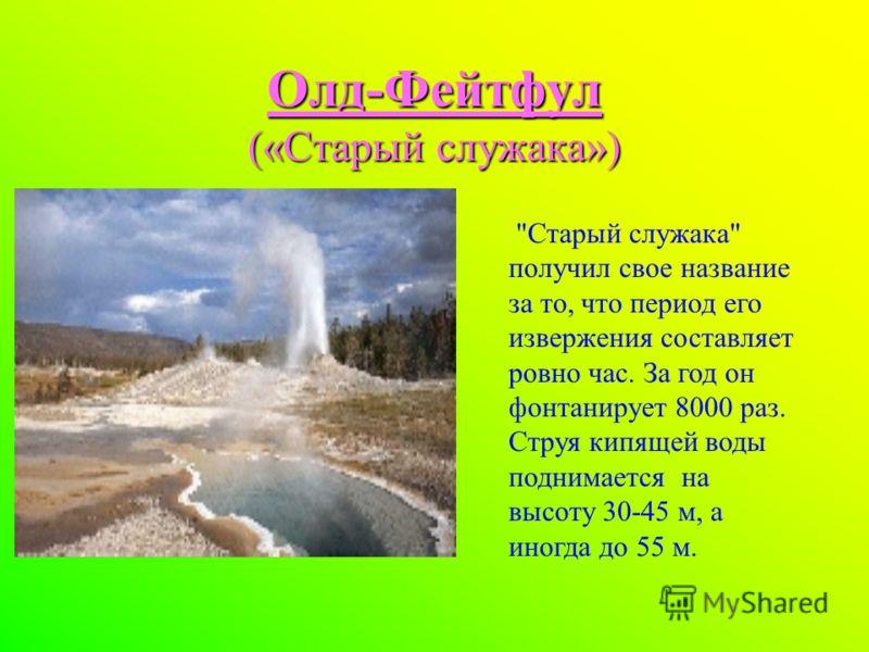 Олд-Фейтфул («Старый служака») Старый служака получил свое название за то, что период его извержения составляет ровно час. За год он фонтанирует 8000 раз. Струя кипящей воды поднимается на высоту 30-45 м, а иногда до 55 м.