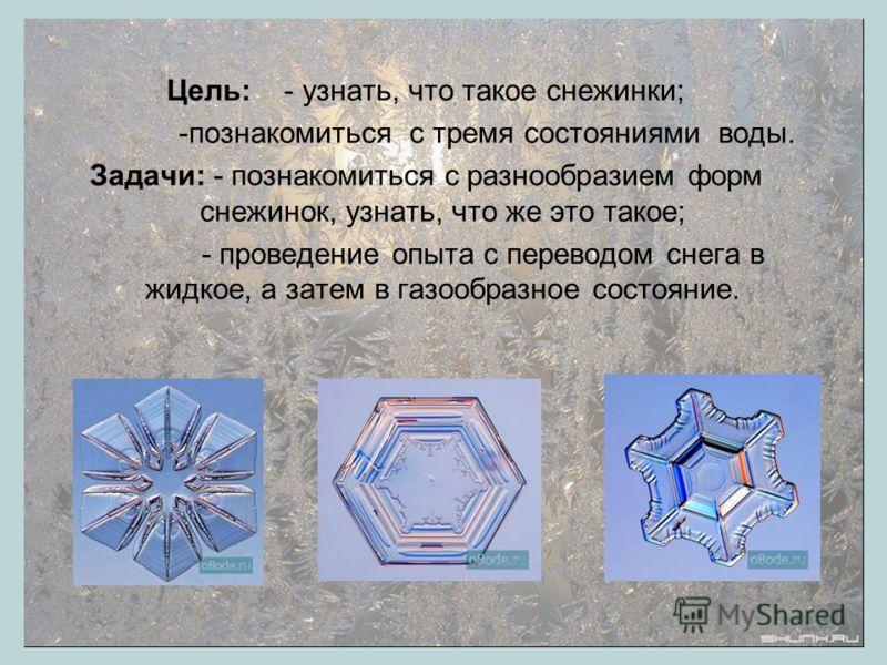 Пензин Владислав средняя школа 853 2 «Б» класс Волшебные снежинки