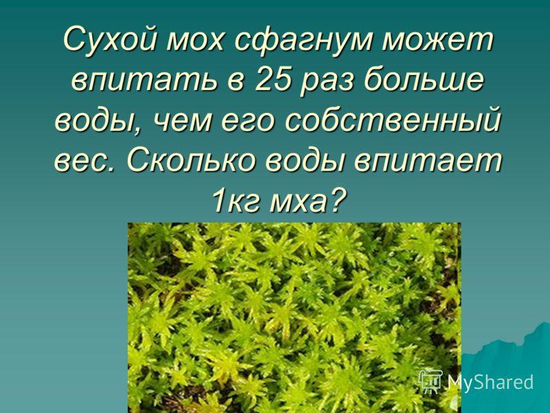 Сухой мох сфагнум может впитать в 25 раз больше воды, чем его собственный вес. Сколько воды впитает 1кг мха?
