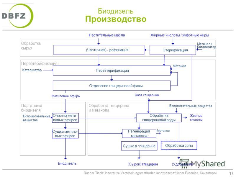 17 Runder Tisch: Innovative Verarbeitungsmethoden landwirtschaftlicher Produkte, Sevastopol Биодизель Производство