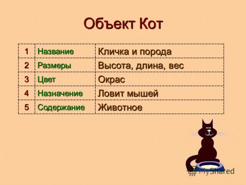 Объект Кот 1Название Кличка и порода 2Размеры Высота, длина, вес 3ЦветОкрас 4Назначение Ловит мышей 5СодержаниеЖивотное