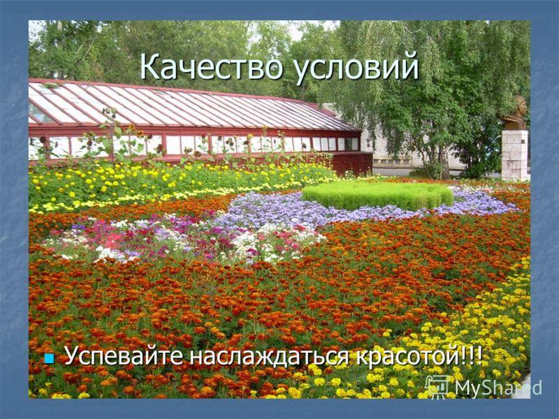 Качество условий Успевайте наслаждаться красотой!!! Успевайте наслаждаться красотой!!!