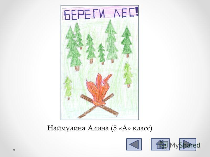 Наймулина Алина (5 «А» класс)