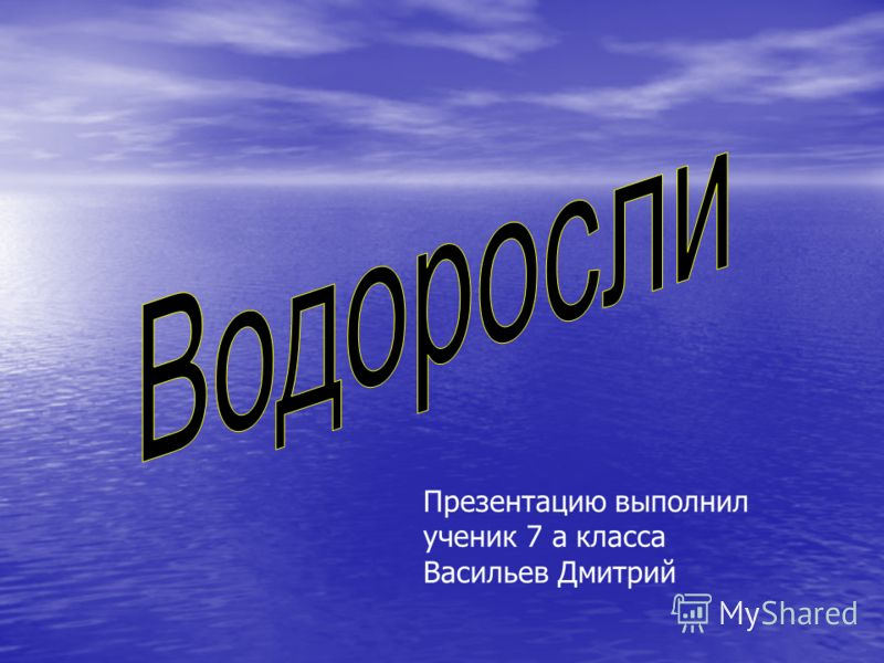 Презентацию выполнил ученик 7 а класса Васильев Дмитрий