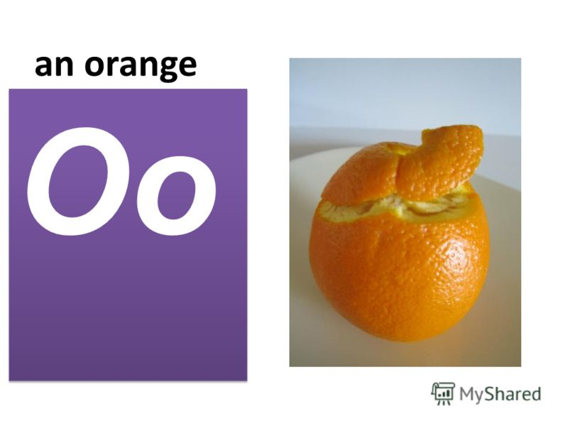 an orange Oo
