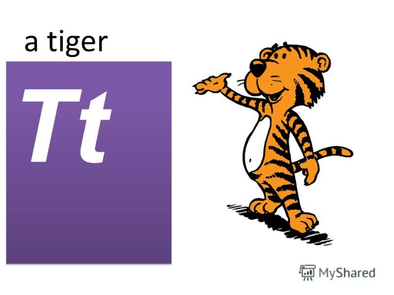 a tiger Tt
