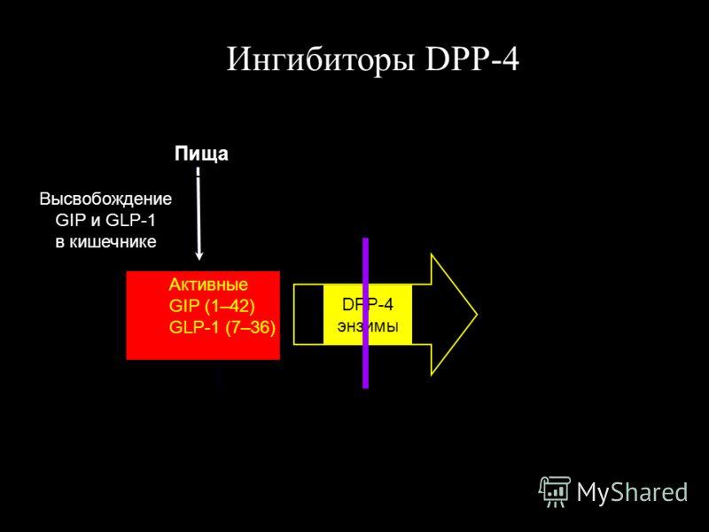 Высвобождение GIP и GLP-1 в кишечнике Активные GIP (1–42) GLP-1 (7–36) Пища Rapid degradation (minutes) DPP-4 энзимы Ингибиторы DPP-4