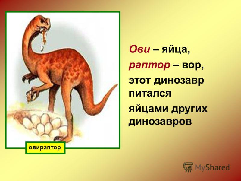 овираптор Ови – яйца, раптор – вор, этот динозавр питался яйцами других динозавров