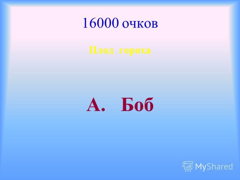 16000 очков Плод гороха А. Боб