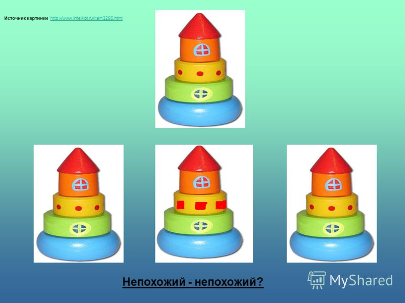 Источник картинки http://www.intelkot.ru/item3295.html http://www.intelkot.ru/item3295.html