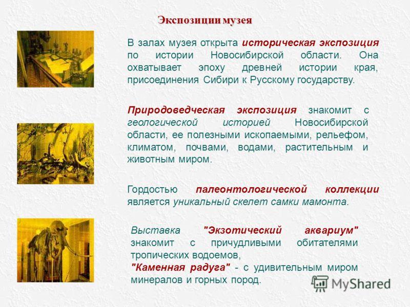 В залах музея открыта историческая экспозиция по истории Новосибирской области. Она охватывает эпоху древней истории края, присоединения Сибири к Русскому государству. Природоведческая экспозиция знакомит с геологической историей Новосибирской област
