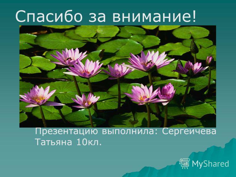 Спасибо за внимание! Презентацию выполнила: Сергеичева Татьяна 10кл.