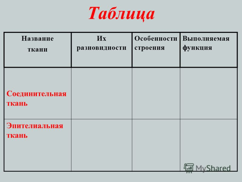 Таблица Название ткани Их разновидности Особенности строения Выполняемая функция Соединительная ткань Эпителиальная ткань