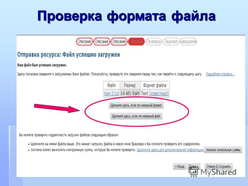 Проверка формата файла Проверка формата файла