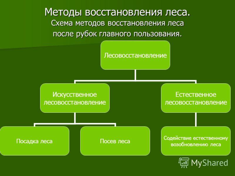 Методы восстановления леса. Схема методов восстановления леса после рубок главного пользования. Лесовосстановление Искусственное лесовосстановление Посадка лесаПосев леса Естественное лесовосстановление Содействие естественному возобновлению леса