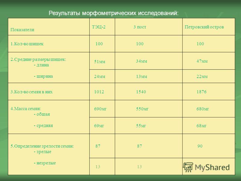 Результаты морфометрических исследований: Показатели ТЭЦ-2 3 постПетровский остров 1.Кол-во шишек 100 2.Средние размеры шишек: - длина - ширина 51мм 34мм 47мм 24мм 13мм 22мм 3.Кол-во семян в них 1012 1540 1876 4.Масса семян: - общая - средняя 690мг 5