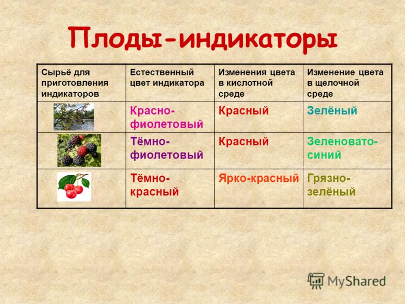 Плоды-индикаторы Сырьё для приготовления индикаторов Естественный цвет индикатора Изменения цвета в кислотной среде Изменение цвета в щелочной среде Красно- фиолетовый КрасныйЗелёный Тёмно- фиолетовый КрасныйЗеленовато- синий Тёмно- красный Ярко-крас