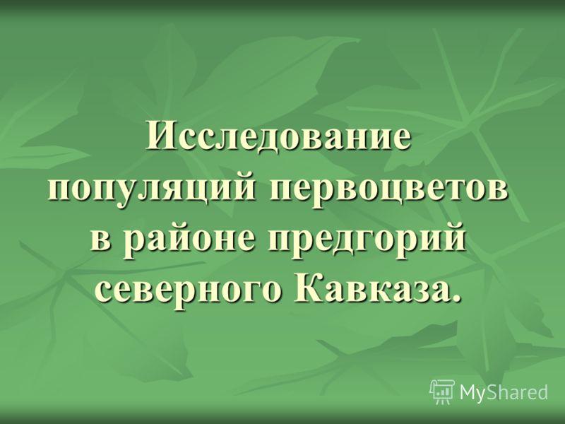 Исследование популяций первоцветов в районе предгорий северного Кавказа.