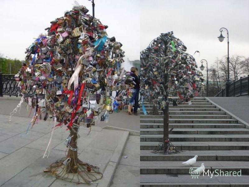 А вот деревья любви!