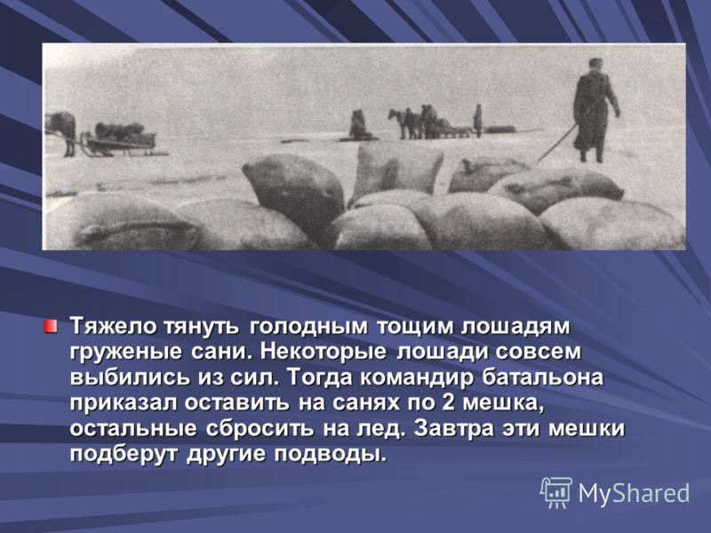 Тяжело тянуть голодным тощим лошадям груженые сани. Некоторые лошади совсем выбились из сил. Тогда командир батальона приказал оставить на санях по 2 мешка, остальные сбросить на лед. Завтра эти мешки подберут другие подводы.