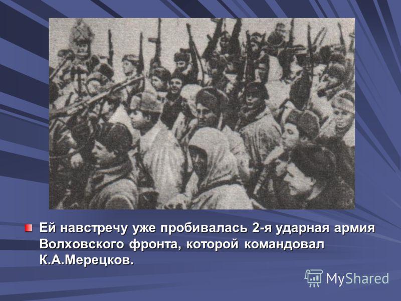 Ей навстречу уже пробивалась 2-я ударная армия Волховского фронта, которой командовал К.А.Мерецков.