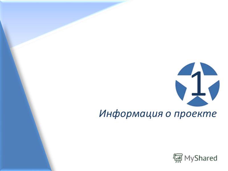 Информация о проекте 1