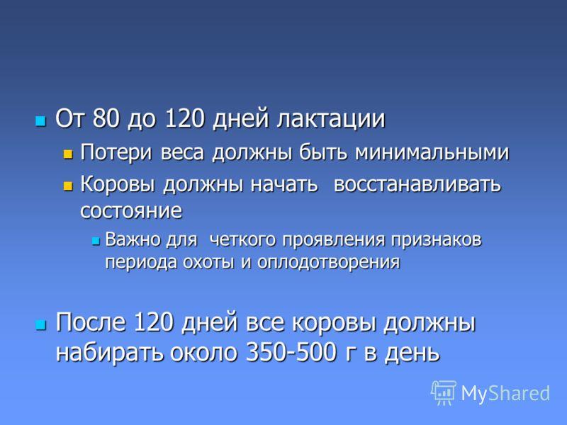 От 80 до 120 дней лактации От 80 до 120 дней лактации Потери веса должны быть минимальными Потери веса должны быть минимальными Коровы должны начать восстанавливать состояние Коровы должны начать восстанавливать состояние Важно для четкого проявления